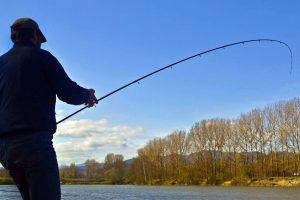 pesca-in-barca-lago-maggiore