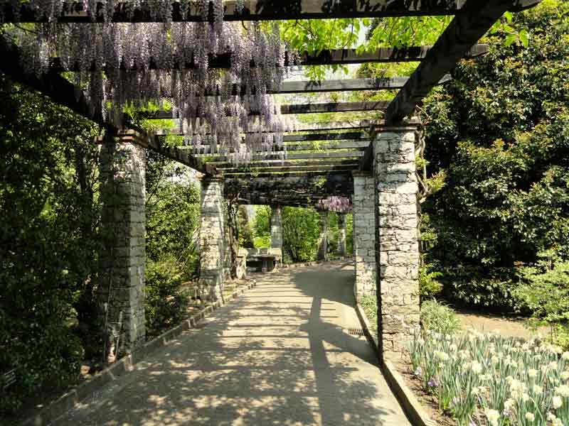 Villa_Taranto_(Verbania)_ pergolato