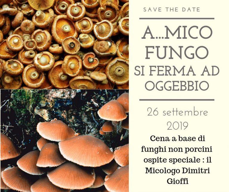 Cena a  Base di Funghi non porcini con breve Lezione sui funghi