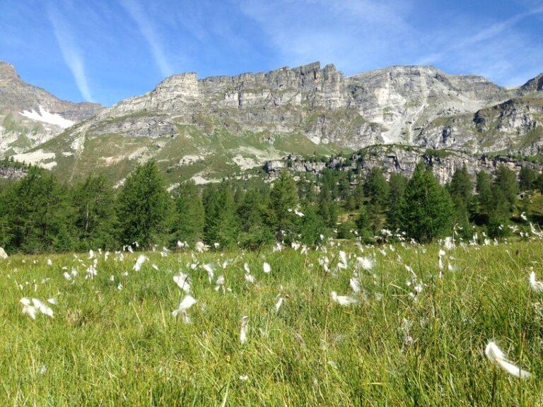 Trekking di due giorni all' Alpe Veglia, alla scoperta di un Parco Naturale sorridente